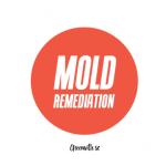Mold Remediation Greenville SC