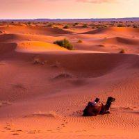 Morocco Bedouin Travel