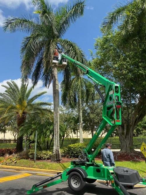 EPS Landscaping & Tree Service LLC