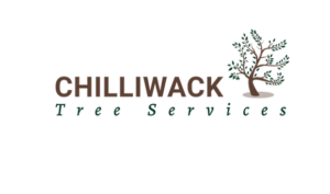 Chilliwack Tree Services